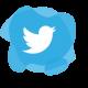 jobportal-twitter-icon